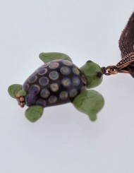 Brown-eyed Turtle